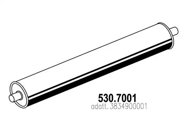 530.7001 ASSO